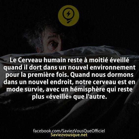 Le Cerveau humain reste à moitié éveillé quand il dort dans un nouvel environnement pour la première fois. Quand nous dormons dans un nouvel endroit, notre cerveau est en mode survie, avec un hémisphère qui reste plus «éveillé» que l'autre. | Saviez-vous que ?:
