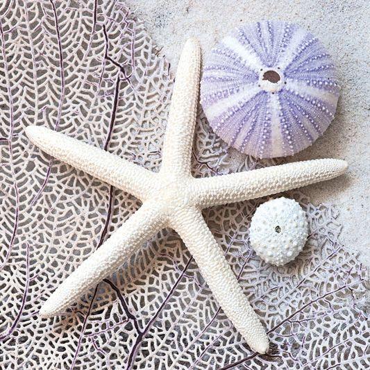 Violet Treasures Decorative Glass Art