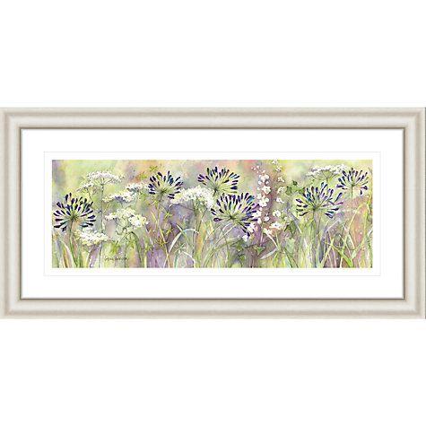 buy catherine stephenson agapanthus grasses framed print 55 x 110cm online at johnlewis
