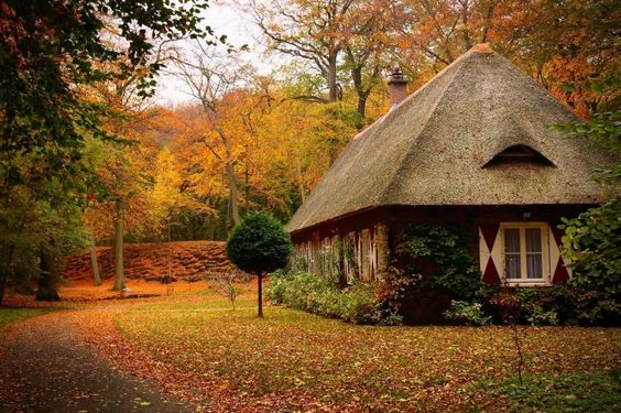 autumn, park, path, leaf, house, tree, forest wallpapers