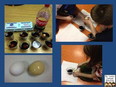 egg in soda experiment