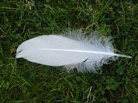 diary of dali48: 12.10.2016 - David Livingstone2 and the continent... http://dali48.blogspot.com/2010/02/12102016-david-livingstone2-and.html?spref=tw … see dali48 on Google,Blogspot,Bod,StumbleUpon,Pinterest,FB,Twitter: