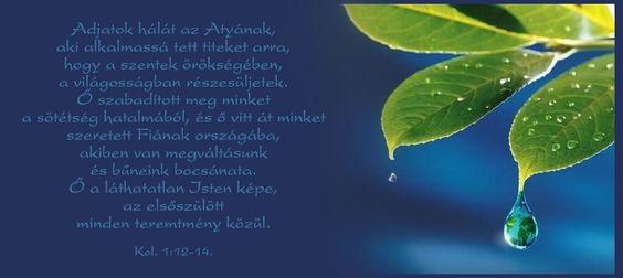 Kolossé 1:12-14,