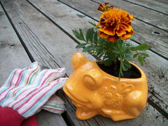 Frog Planter or Scrubbie Holder in Orange or by TLCCeramicsIL
