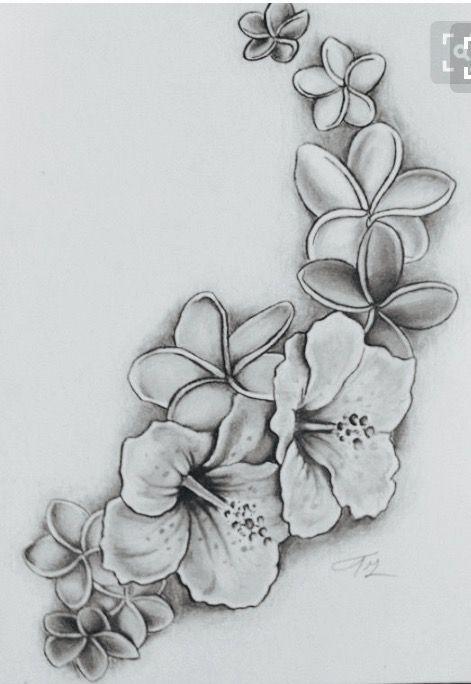 Untitled Hawaiian Flower Tattoos Tropical Flower Tattoos Hibiscus Drawing