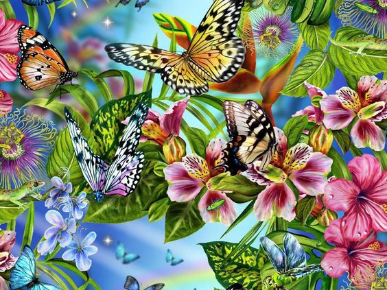 Butterfly Kisses HD Desktop Wallpaper