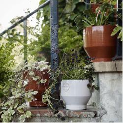 Ceramic Pots Edge Pot Flowerpot Skagerakskagerak Ceramic Ceramicdiycreative Pots In 2020 Flower Pots Garden Pots Hanging Plants