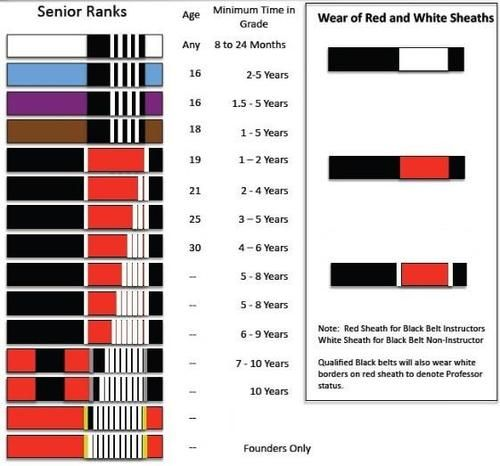 Gracie Bjj Belt System: Kids Belt Grading System! #GBK #GBA