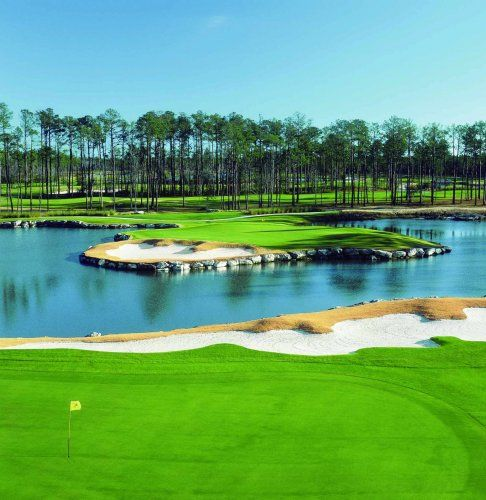 15++ Big cat golf courses in myrtle beach viral