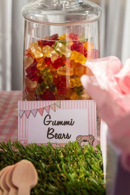"Photo 1 of 14: Teddy Bears' Picnic / Birthday ""Teddy Bears' Picnic "" | Catch My Party"