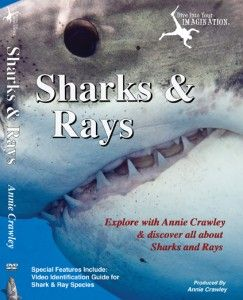 Meet underwater explorer and filmmaker Annie Crawley at the Kids Fest Gig Harbor Film Festival from 1-3 PM on October 19, 2014. She will show Sharks & Rays!