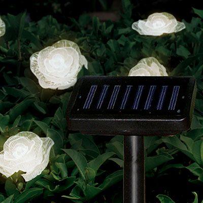 Village Green Solar LED Rose Decorative Lights at Big Lots. shopping time Pinterest Solar ...