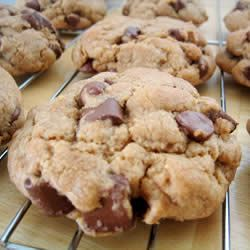 Best Big, Fat, Chewy Chocolate Chip Cookie-- my go-to choc chip cookie ...