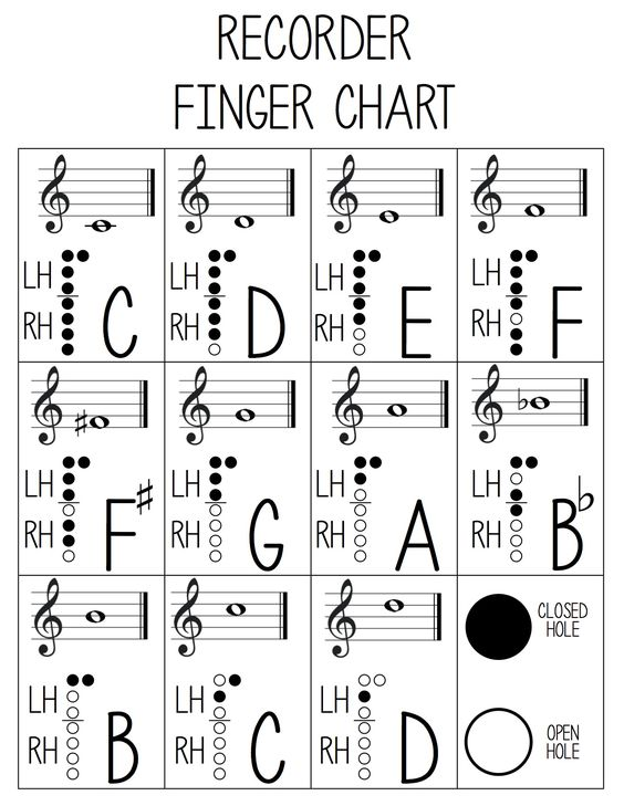 Best Images About Music Learning On   Sheet Music
