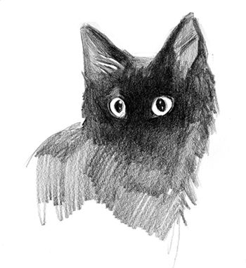 Cats on the Behance Network