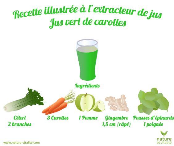 Recette très simple de jus vert à la carotte que vous pourrez réaliser avec votre extracteur de jus : 2 belles branches de céleri, 3 carottes, 1 pomme, 1,5 cm de gingembre (râpé) et 1 grosse poignée d'épinards.