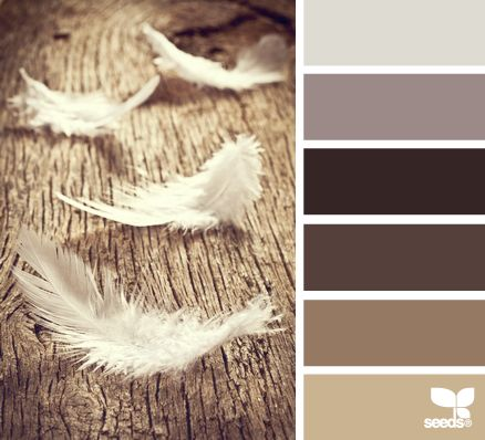 feathered tones: Color Palette Gray Brown, Color Palettes, Color Inspiration, Color Schemes, Color Feathered, Feathered Tones, Basement Paint Colors, Comfort Colours, Colour Palettes