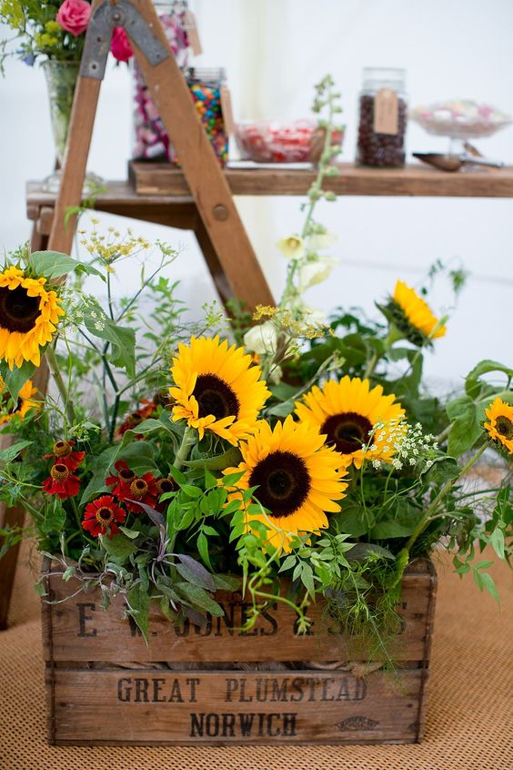 Wooden Crate of Yellow Sunflowers   Chaucer Barn Norfolk   Rustic Wedding   Katherine Ashdown Photography   http://www.rockmywedding.co.uk/louise-bradley/