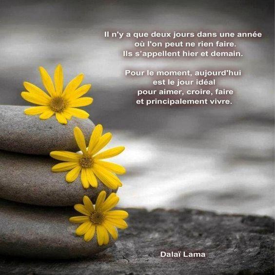 Citations et Panneaux Facebook à partager: Citation du Dalaï Lama: