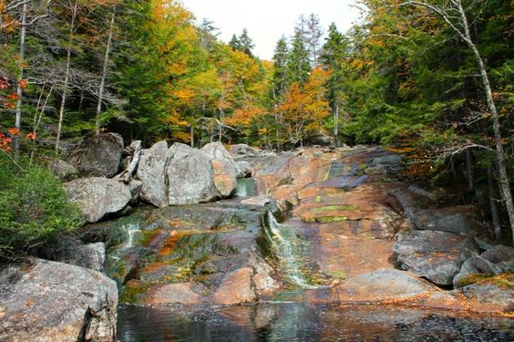 Up on the blog this week: 5 Scenic Family Hikes in Lincoln New Hampshire! Be sure to check it out. Link to blog in bio. Pictured is Harvard Falls. I love how the colors in the rocks compliment the colors in the trees! . . . . #Scenesofnewengland  #newenglandlife #eastcoast  #newenglandpictures  #lovelifeoutside #ignewengland #igersnewengland #yankeemagazine #igersnh #goNH #newhampshire #newhampshirelife #fall #fallcolors #fallcolours #hikingadventures #hiking #family #familytime #familyhike…