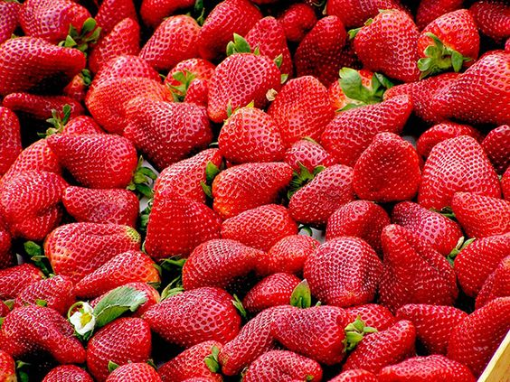 strawberries-99551_960_720