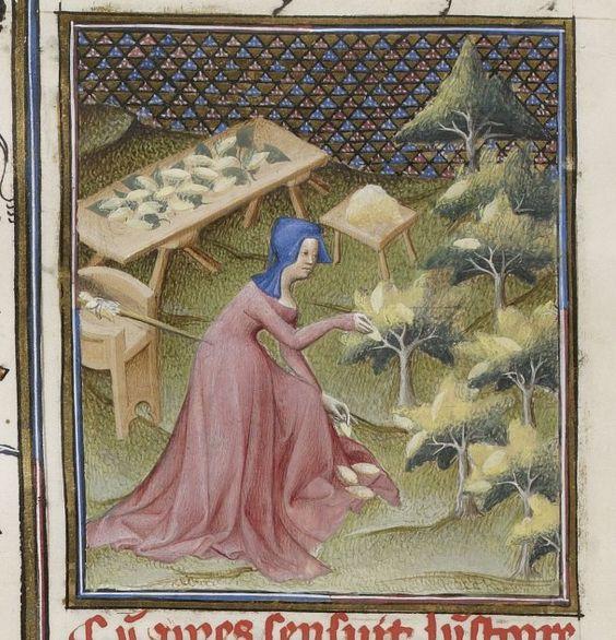 Giovanni Boccaccio, De Klaris of mulieribus, Traduction Guest of En français Livre Des fatal Noble and renommees