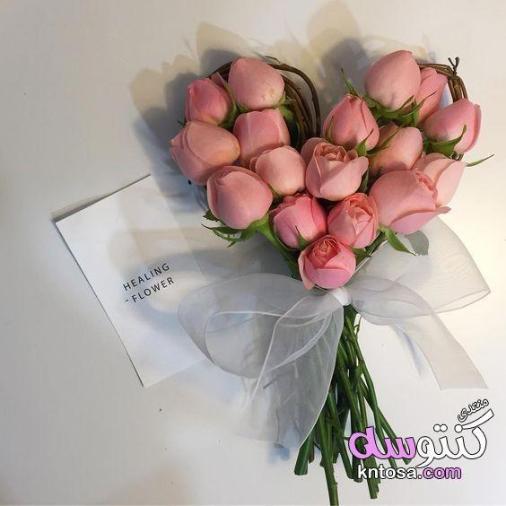 اجمل باقات الورد الطبيعي اجمل باقة ورد رومانسية اجمل الورود الرومانسية اشكال باقات ورد ه Valentine Flower Arrangements Flower Arrangements Flowers Bouquet Gift
