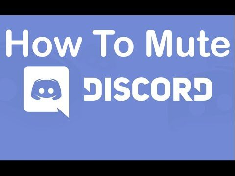 How To Mute People Bots In The Haikhuu Trading Discord Youtube Discord Muted Trading