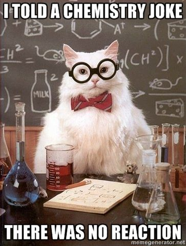 Chemistry Cat: I told a chemistry joke. There was no reaction.
