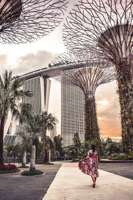 20 things to do and see in Singapore Gardensy by the Bay