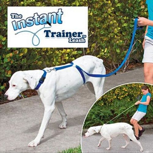 Instant Coach Dog leash-30-Lbs-stop Pulling Dog Walk