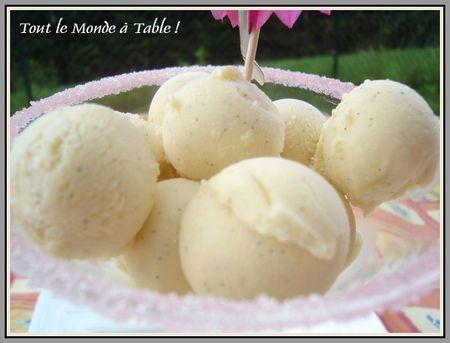 glace vanille sans sorbetiere