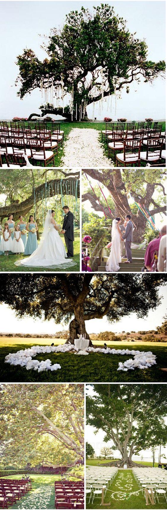 Cérémonie en plein air, mariage sous un arbre!