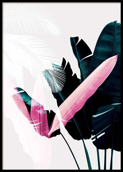 Plant exposure Poster in the group Prints / Floral at Desenio AB (8987)