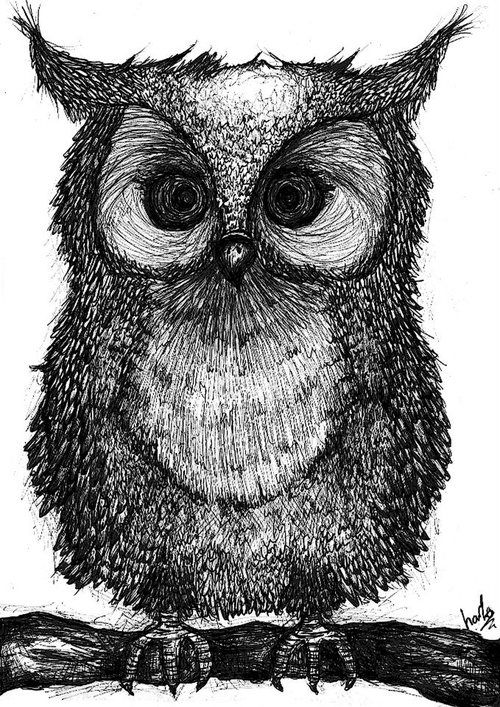 Always love you storms and enough said on pinterest for Cool drawings of owls