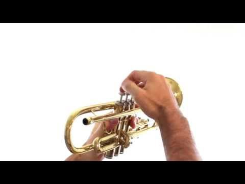 Trumpet Lesson 1 Holding The Trumpet Youtube In 2020 Trumpet Hold On Lesson