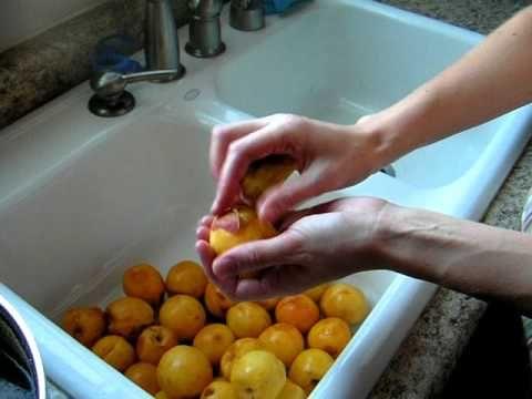 ▶ Easy Way to Peel a Peach - YouTube