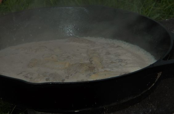 Fresh foraged morel mushrooms in cream sauce.