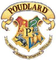 le fameux blason de Poudlard