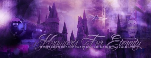 Hogwarts for Eternity 9ed3afb02b8dcee4161d4949de51bfb7