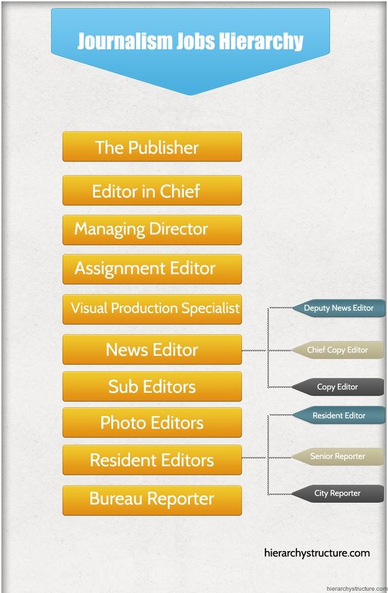 Journalism Jobs Hierarchy Jobs Hierarchy Pinterest