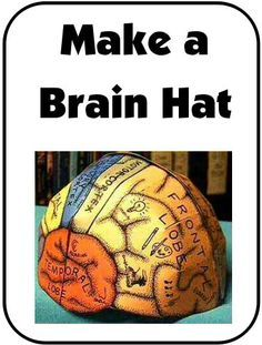 """NEW DOWNLOAD: Make a """"Brain Hat"""" What a fun way to learn about the different parts of the brain and the functions of each part! Includes templates for different 'sizes' (child through adult). Download Club members can download @ http://www.christianhomeschoolhub.com/pt/Brain--Nervous-System--Neuroscience-Teaching-Materials/wiki.htm"""