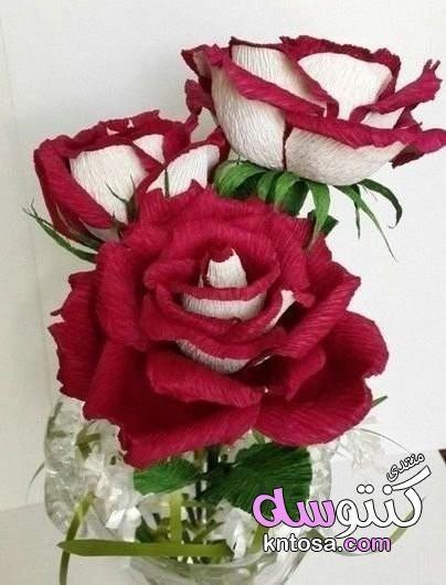 طريقة عمل وردة من ورق الكوريشة خطوة بخطوة اعمال يدوية طريقة عمل ورود بورق الكورنيش بالصور Paper Roses Paper Flowers Paper Flowers Diy