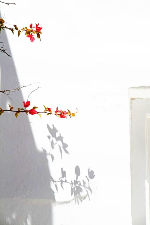 Red And White Asthetic Wallpaper Des Conver