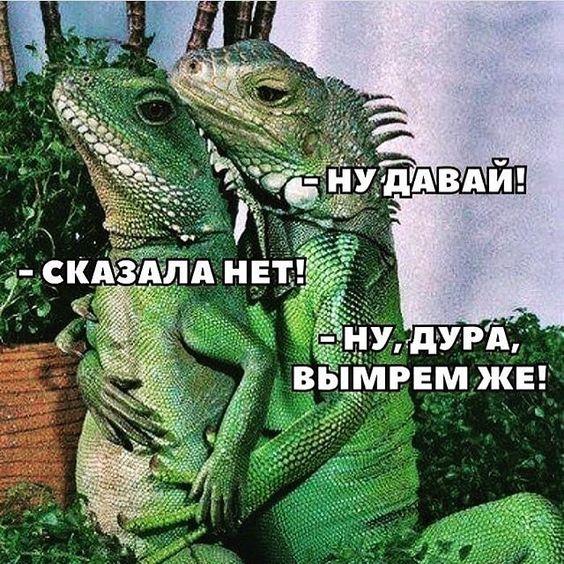 Публикация Антон Батырев в Instagram • 21 Июн 2020 в 9:50  UTC