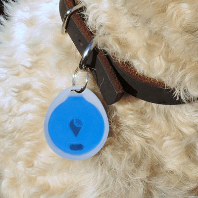 dog tracking device iphone