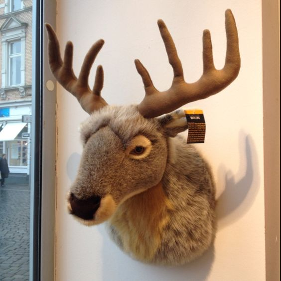 cool stuffed animal mounted deer head favorite places spaces pinterest mounted deer. Black Bedroom Furniture Sets. Home Design Ideas