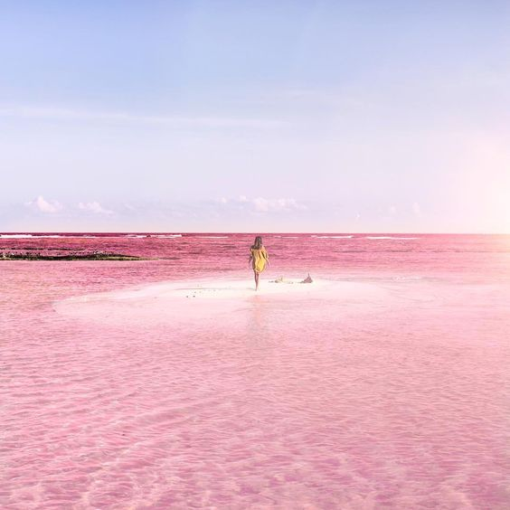 What color is a lagoon? In the tiny fishing village of Las Coloradas, located on the eastern coast of Mexico's Yucatán Peninsula, it's pink. This section of the peninsula's largest wetlands reserve—the Ría Lagartos Biosphere Reserve—is renowned for its striking rosé hues and its large, white salt banks that rise out of the earth like …: