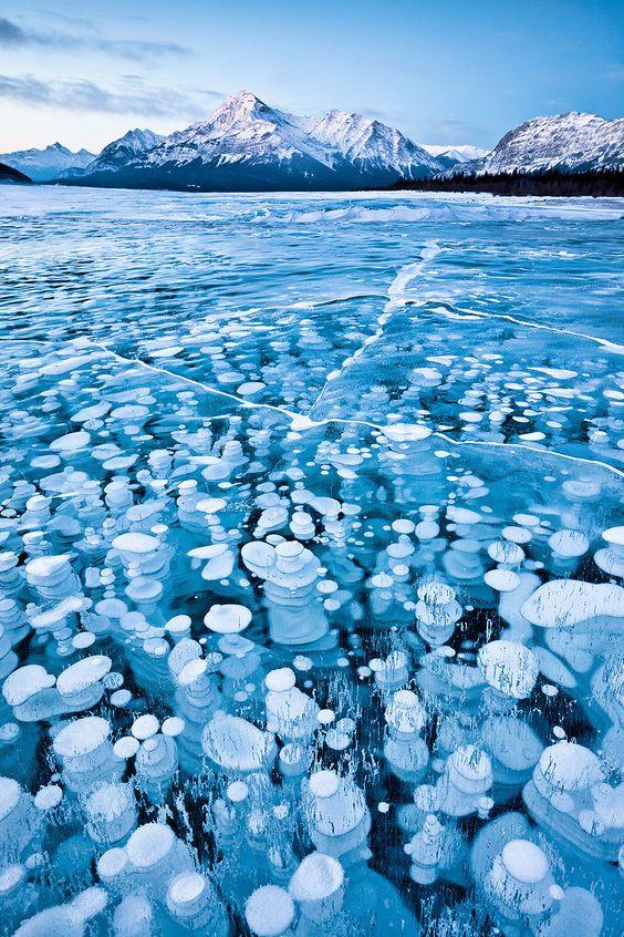 En hiver, le lac artificiel Abraham (Canada) se constelle de milliers de bulles de méthanes qui gèlent à l'approche de la surface et se cristallisent sous la glace. Elles émanent de la végétation qui couvre le fond du lac.                                                                                                                                                     Plus