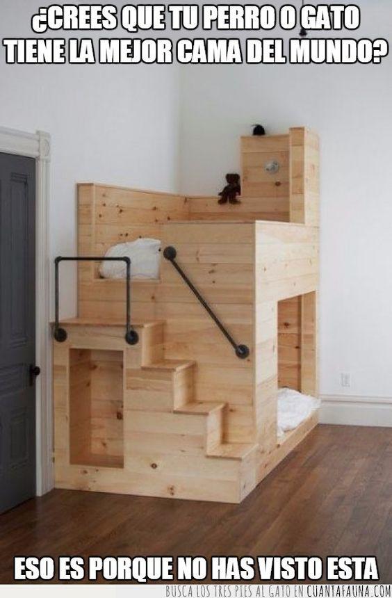 ¿La mejor cama para tus mascotas?